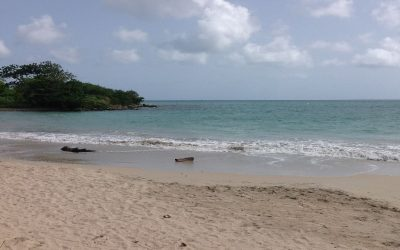 BEACHFRONT LAND AT VIGIE