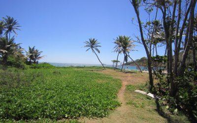 Beach Front Land at Cas En Bas- REDUCED